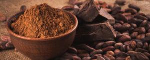 le chocolat noir , excellent pour la santé