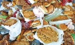 la mal bouffe crée l'obésité et les maladies cardio vasculaires